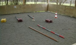 manege-poney-1.jpg