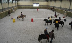 manege-poney-800 SDIF-2.JPG